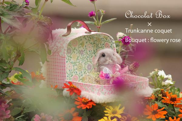 Chocolat Box1