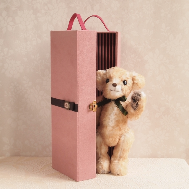 doll-carry-trunk