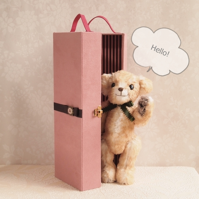 Hello-bear-trunk